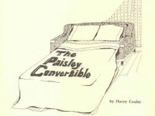 Paisley Convertible